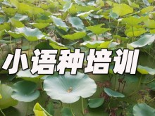 上海欧风培训中心怎么样