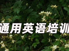 绍兴柯桥区通用英语培训哪里好_价格